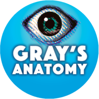 GRAY'S ANATOMY