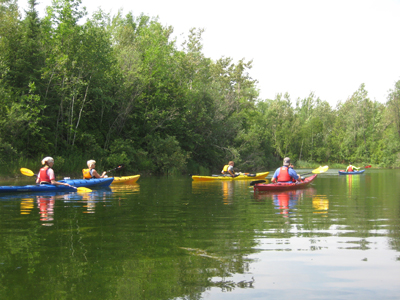 Five Kayaks on tour 400 by 300