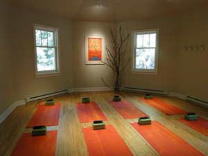 Tree of Life Yoga Studio pic 300 by