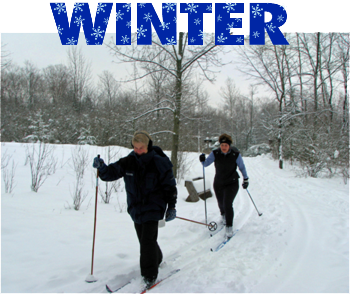 door-county-winter-snow-ski